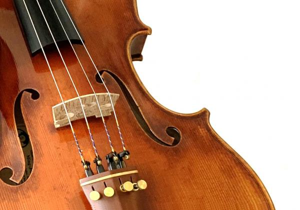 Our experience finding the right viola