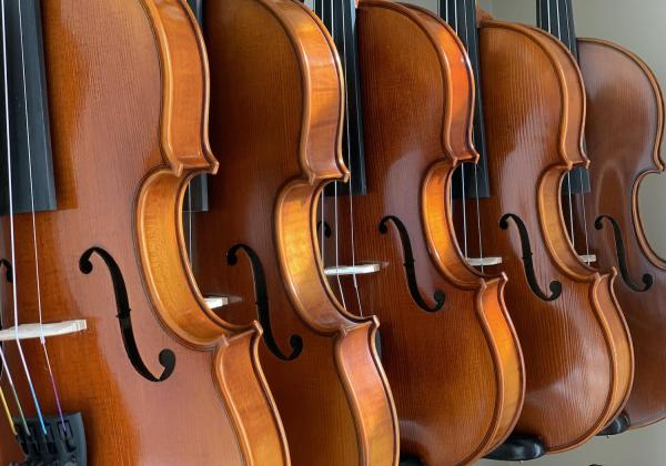 Row of violins from the front