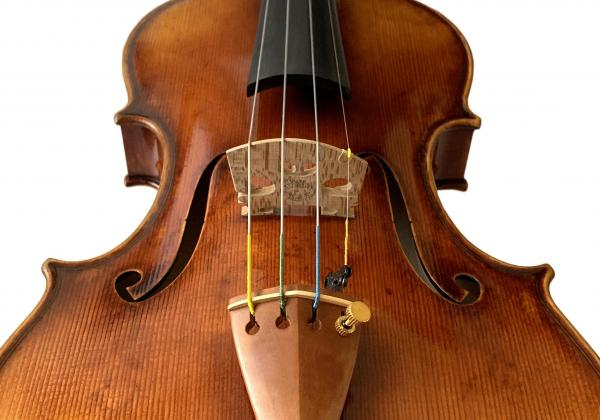 My symphony musician wife and our concertmaster agree this is the right violin