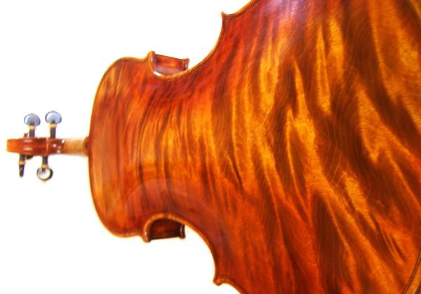 With Fiddleheads, you are not simply purchasing a violin from a dealer