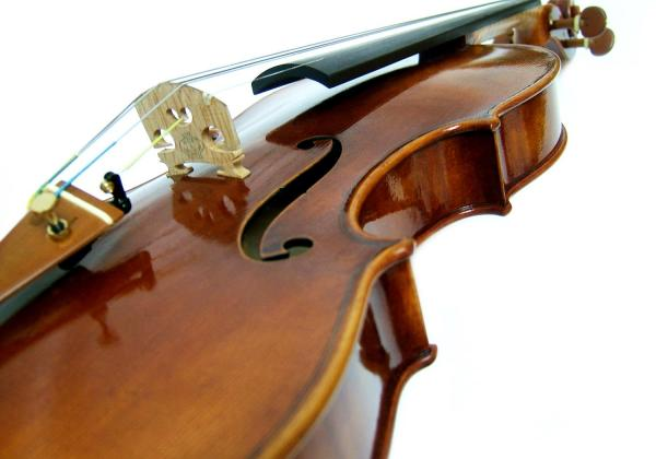 I tried out countless violins in my search at other shops, then Rhianon made it simple and easy to decide