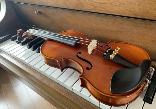 Beautiful violins and extraordinarily wonderful service :)