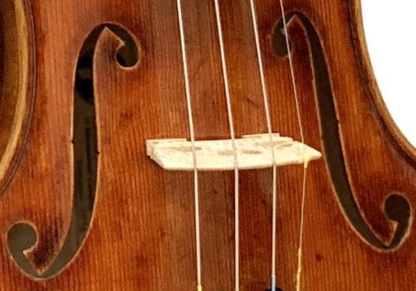 I am thoroughly enjoying my 909 violin  from Fiddleheads: This Violin is enriching my life