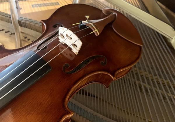 Looking for the perfect fiddle