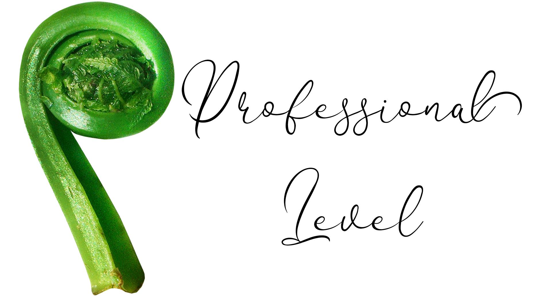 Master & Professional Level