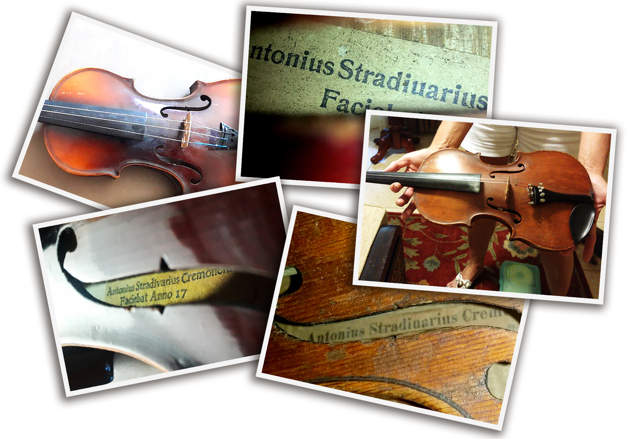 various photos of fake Strad violins spread out across each other