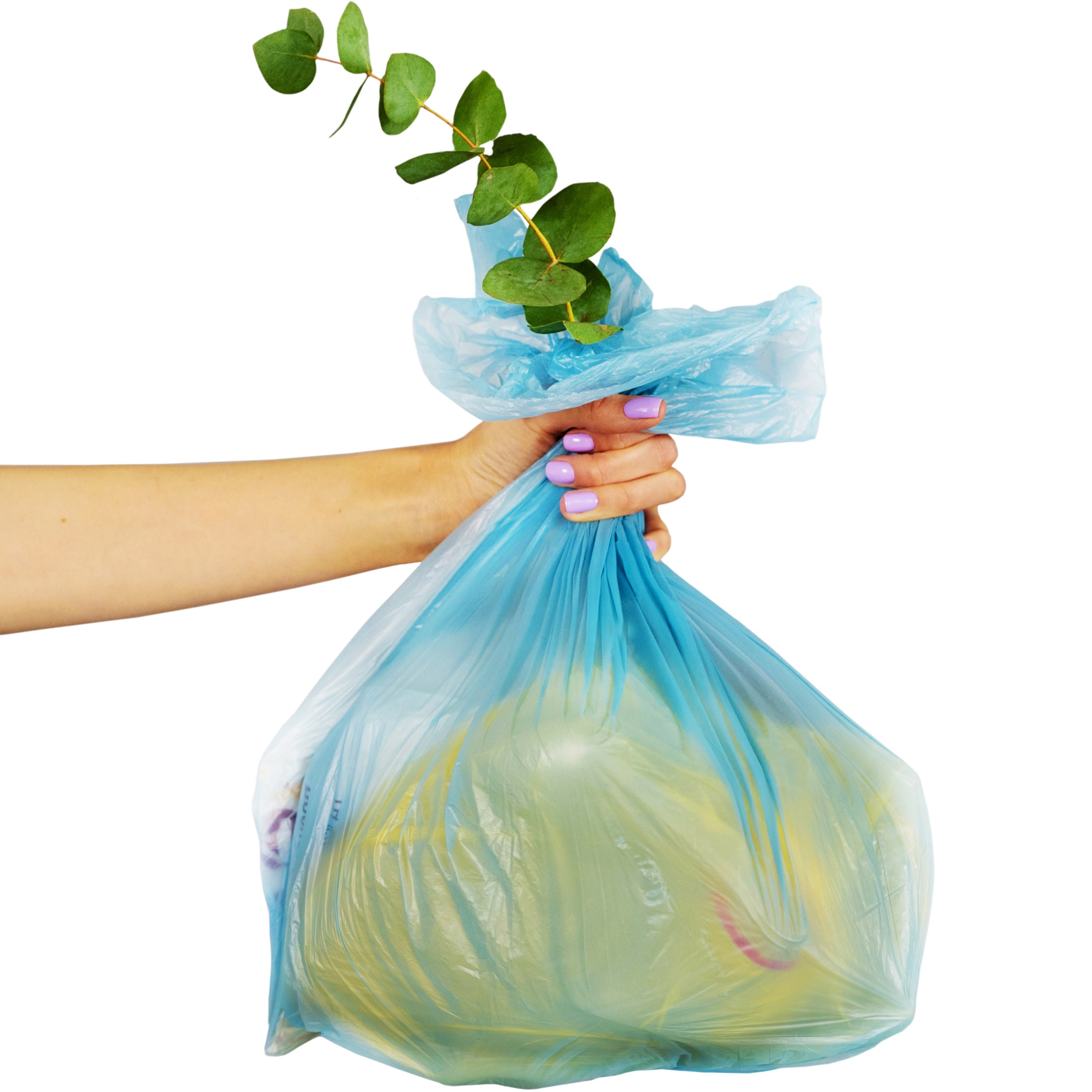 woman's hand holding a bag full of recycling with a green leafy plant coming out the top