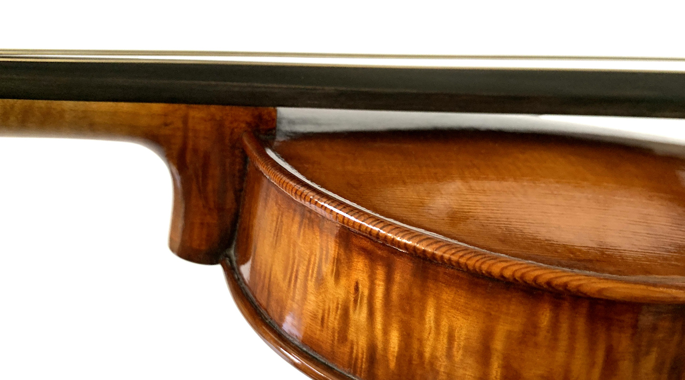violin neck and fingerboard