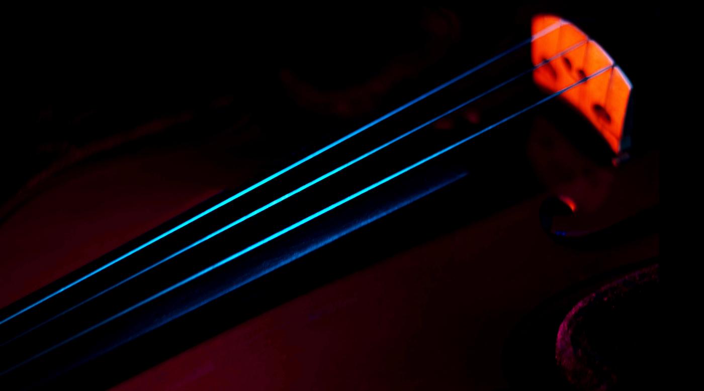 closeup of violin strings in the dark