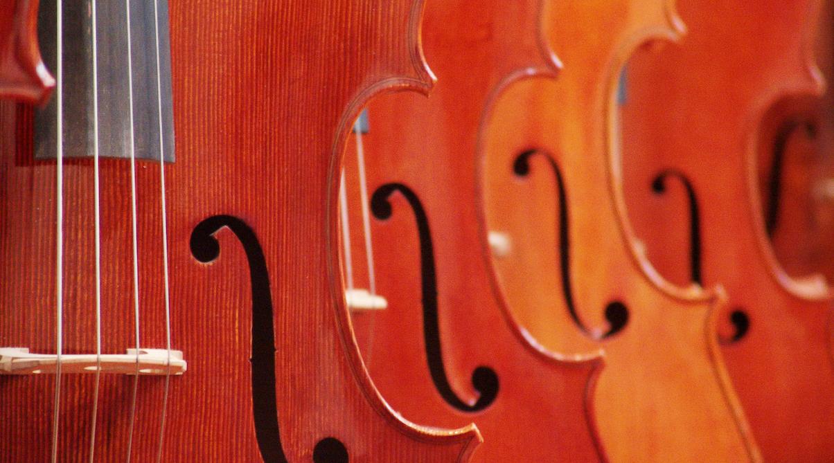 row of violins up close
