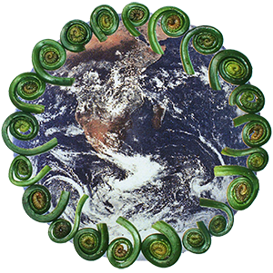 planet earth with fiddleheads ferns circling around the outside